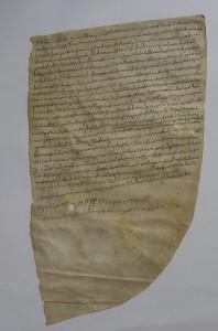 Diplomatico, Abbazia di S. Salvatore del Monte Amiata, 876 maggio 4